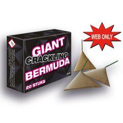 Giant Bermuda 20 stuks in pakje